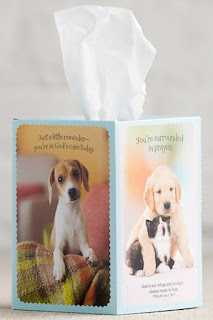 http://www.christianbook.com/whiskers-puppy-praying-card-tissue-cover/pd/544023?event=AFF