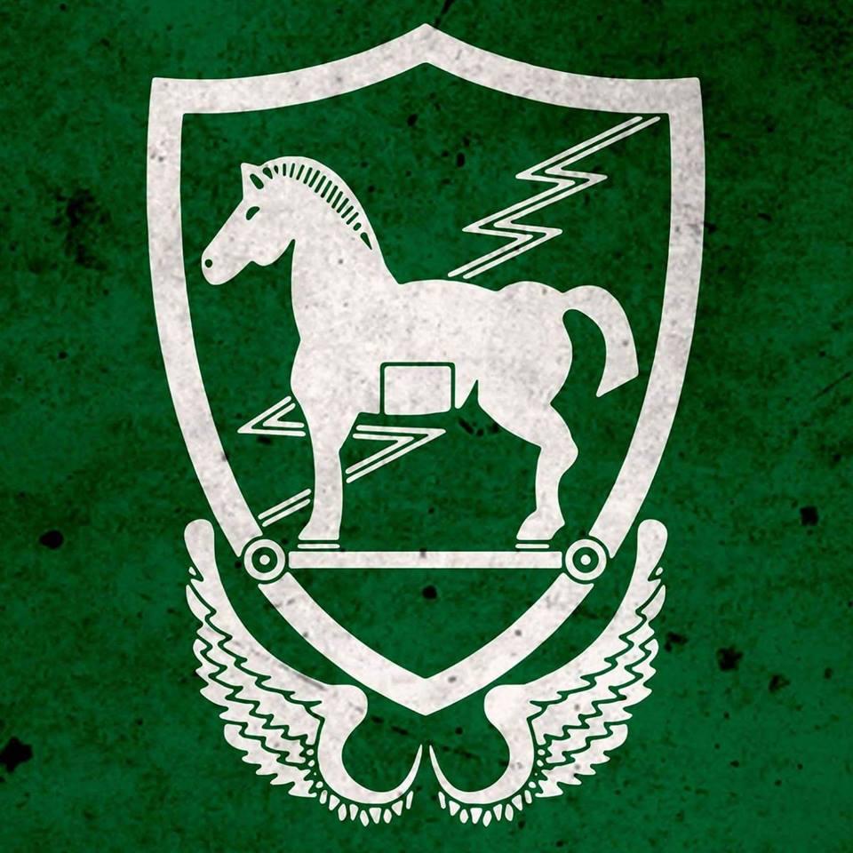 10-та група спеціального призначення (10th Special Forces Group)