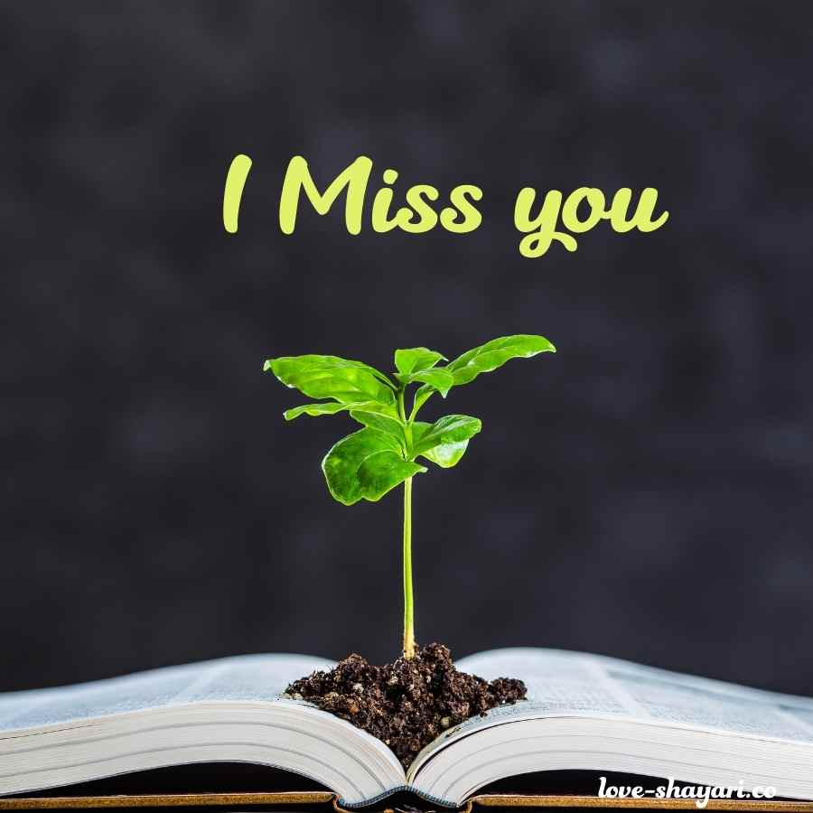 love you and miss you images