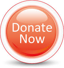https://www.idonate.ie/donation_widget/register-donor-anonymous.php?pid=1180&tax=no