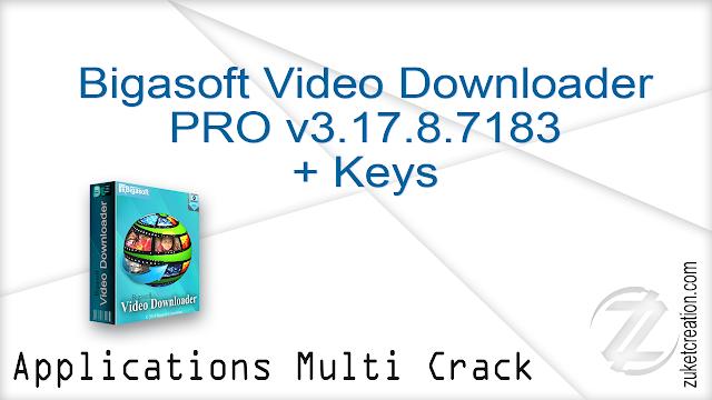 Bigasoft Video Downloader PRO v3.17.8.7183 + Keys