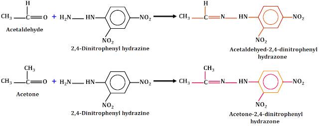 2,4-dinitrophenyl hydrazine test (2,4-DNP test)