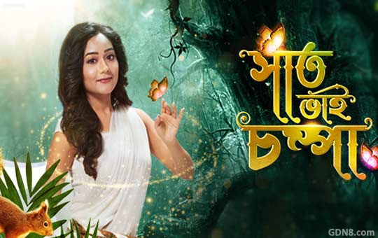 Saat Bhai Champa - Zee Bangla Serial