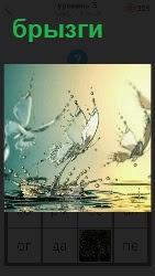 460 слов 4 летатю бабочки над водой от которых брызги в разные стороны 5 уровень