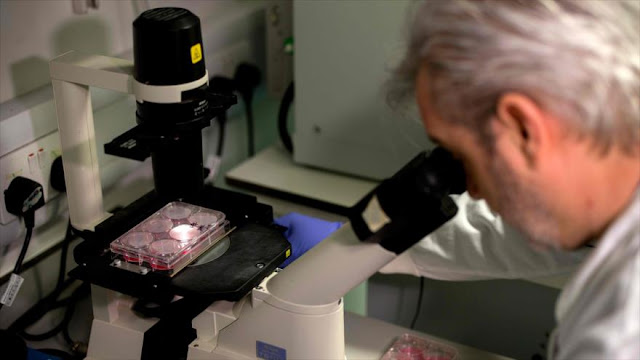 Nuevo estudio: COVID-19 también puede dañar el sistema endocrino
