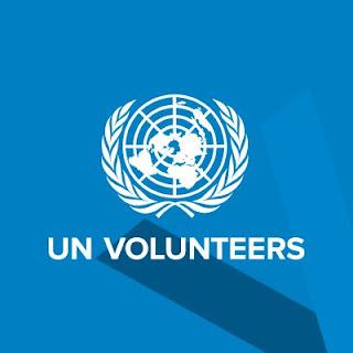 Volontaire des Nations Unies dans les Médias Sociaux 2020