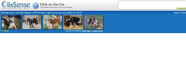seleccionar el gato clixsense