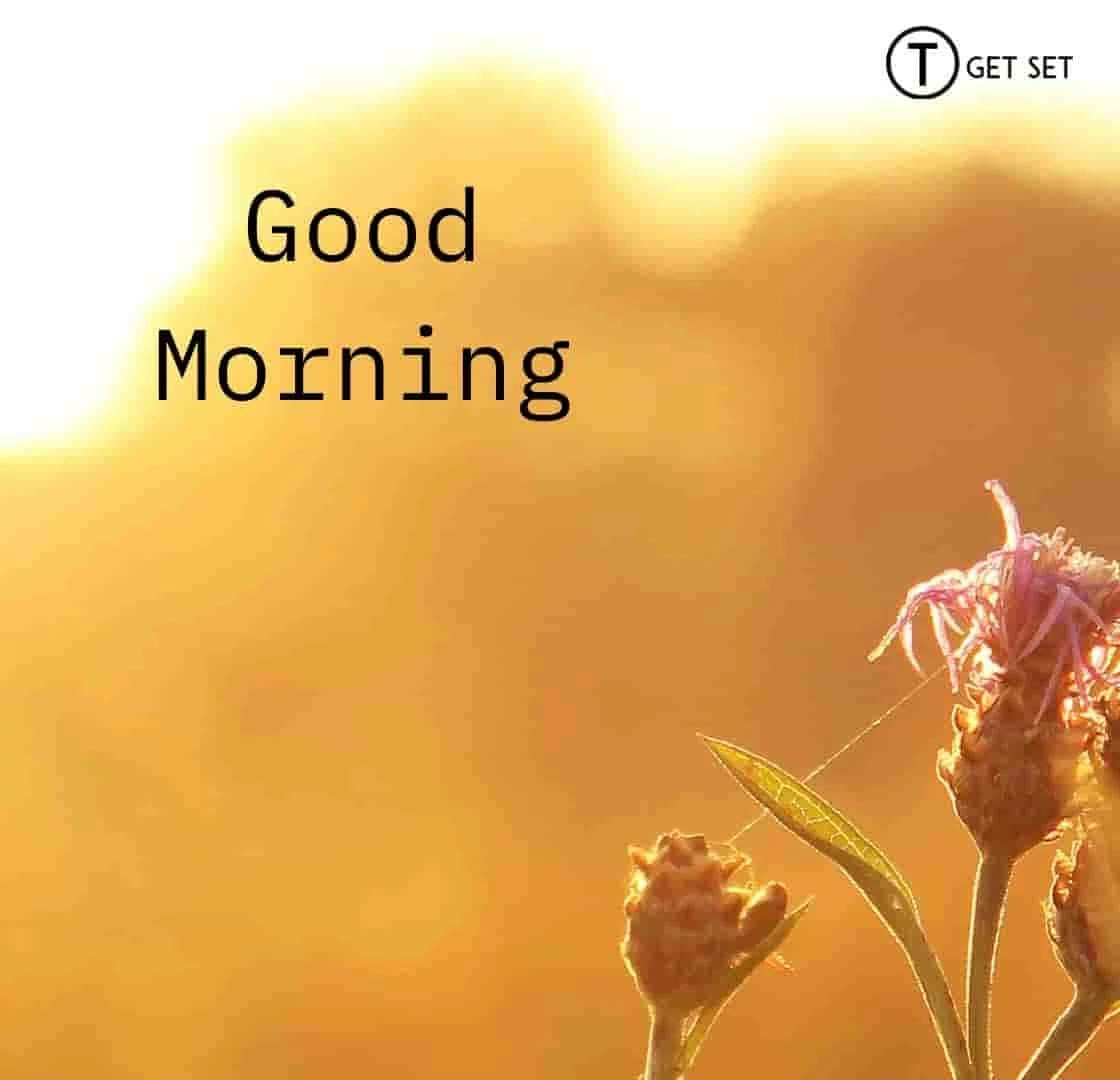 good-morning-image