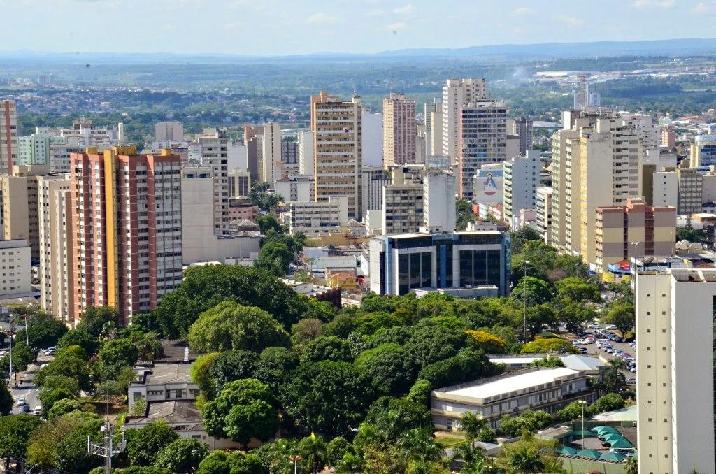 arborização urbana, goiania, goias, plano de arborização urbana, plantando árvore na cidade, plano de arborização, como plantar uma árvore, conservação, biodiversidade