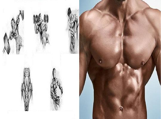 Best Chest Pumping Workout ~ www bodybuilding110 com