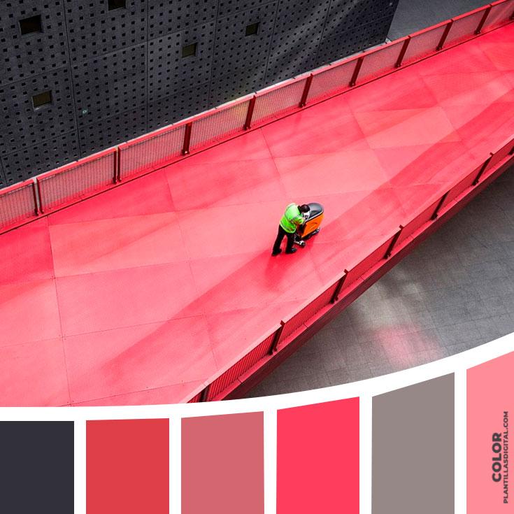 color_135