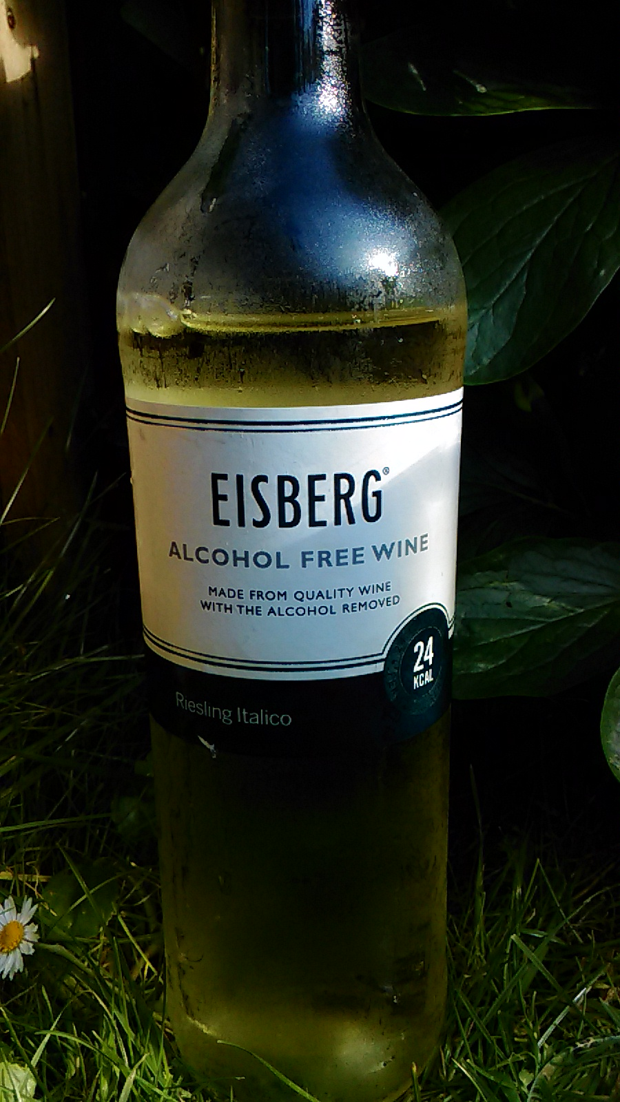 Best Alcohol Free Wines