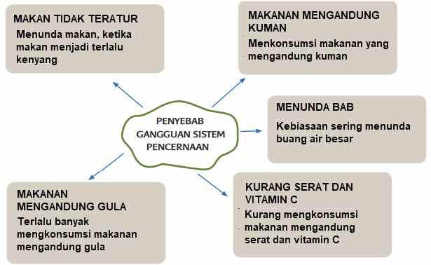 penyebab gangguan pada sistem pencernaan