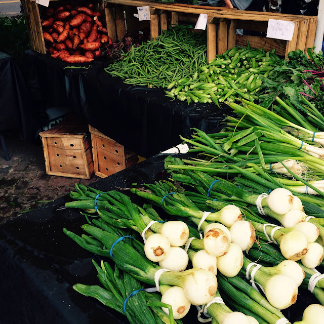 Charleston Farmers Market in Marion Square | The Lowcountry Lady