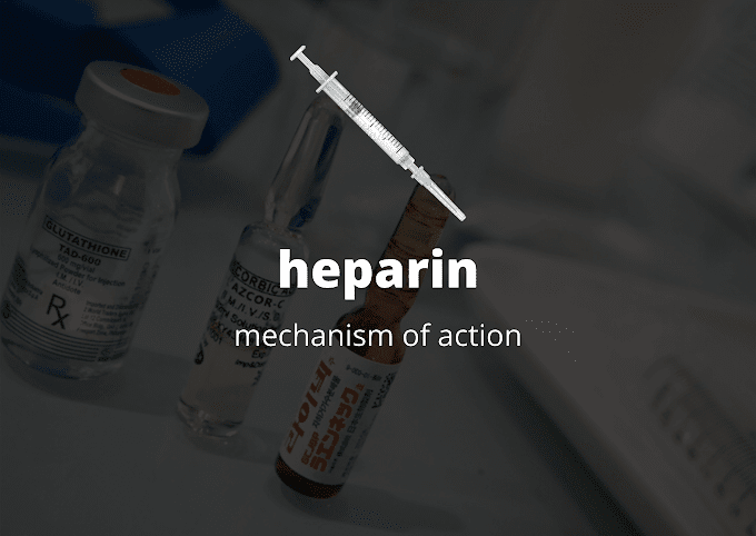 heparin mechanism of action #simple & easy