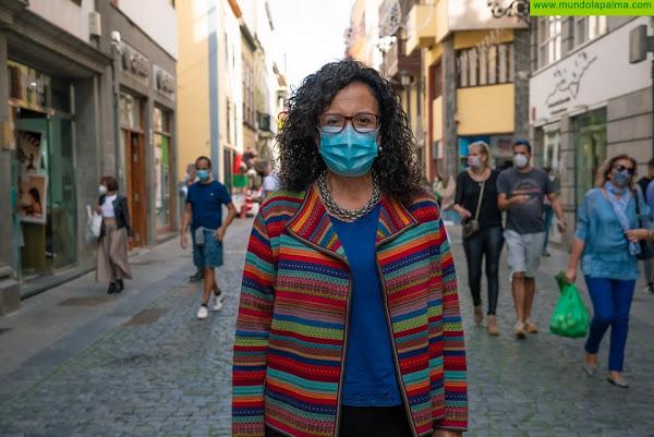 El Cabildo estrena la plataforma 'Participa La Palma' con la exposición pública del Plan Estratégico de Participación Ciudadana