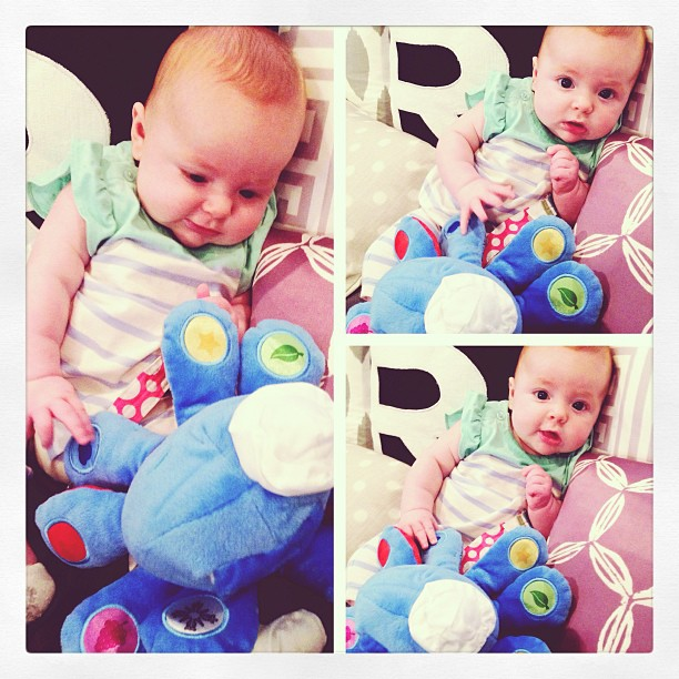 Veronika S Blushing Harper S Nursery Updated: Veronika's Blushing: Weekend Snaps