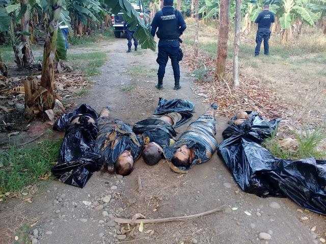 Investiga FGE  hallazgo de restos humanos, en Vega de Alatorre