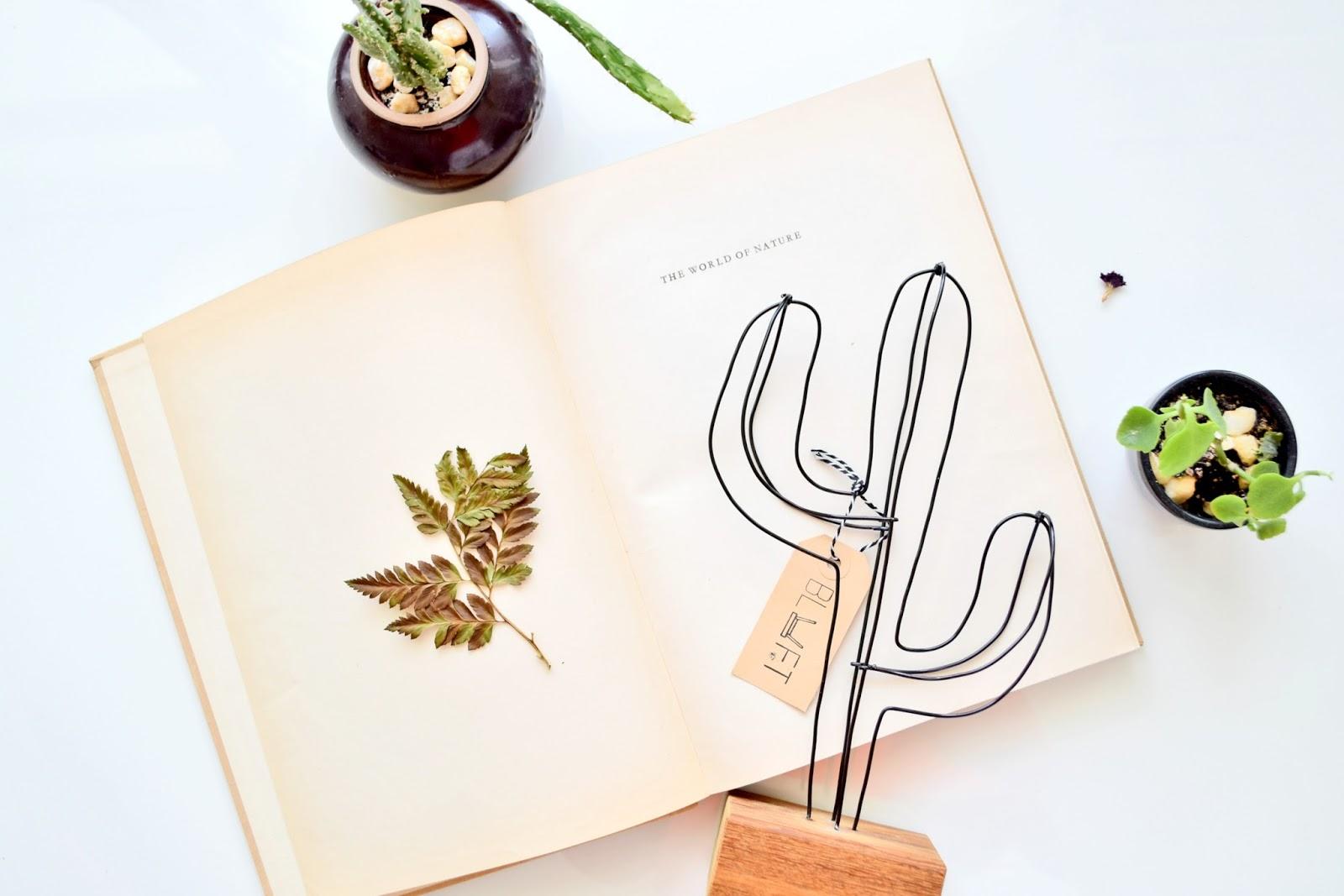 kaktus zrobiony z drutu