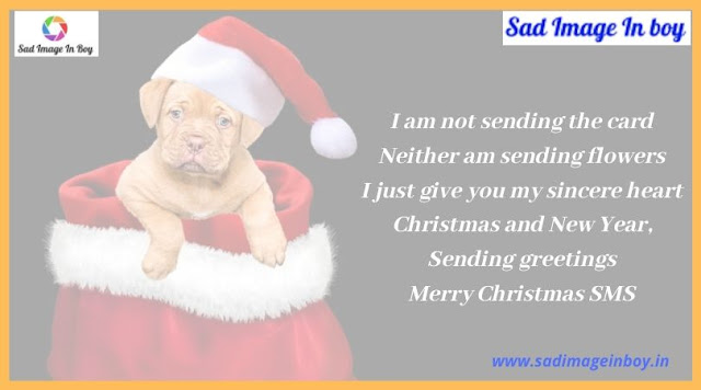 Merry Christmas Images | christmas greetings images, i want a hippopotamus for christmas