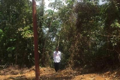 Mengacu Protokol WHO, Meski Negatif Corona Jokowi Wajib Isolasi Diri 14 Hari