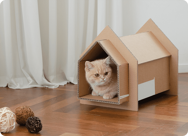 #ICYMI: You can turn Samsung TV boxes into an eco-friendy pet home with new designs