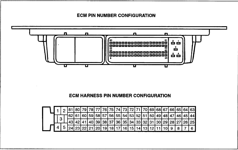 Hyundai Atos Ecu Wiring Diagram Bowling Alley Lane Best Library Essig Rh 3 10 17 Tierheilpraxis De