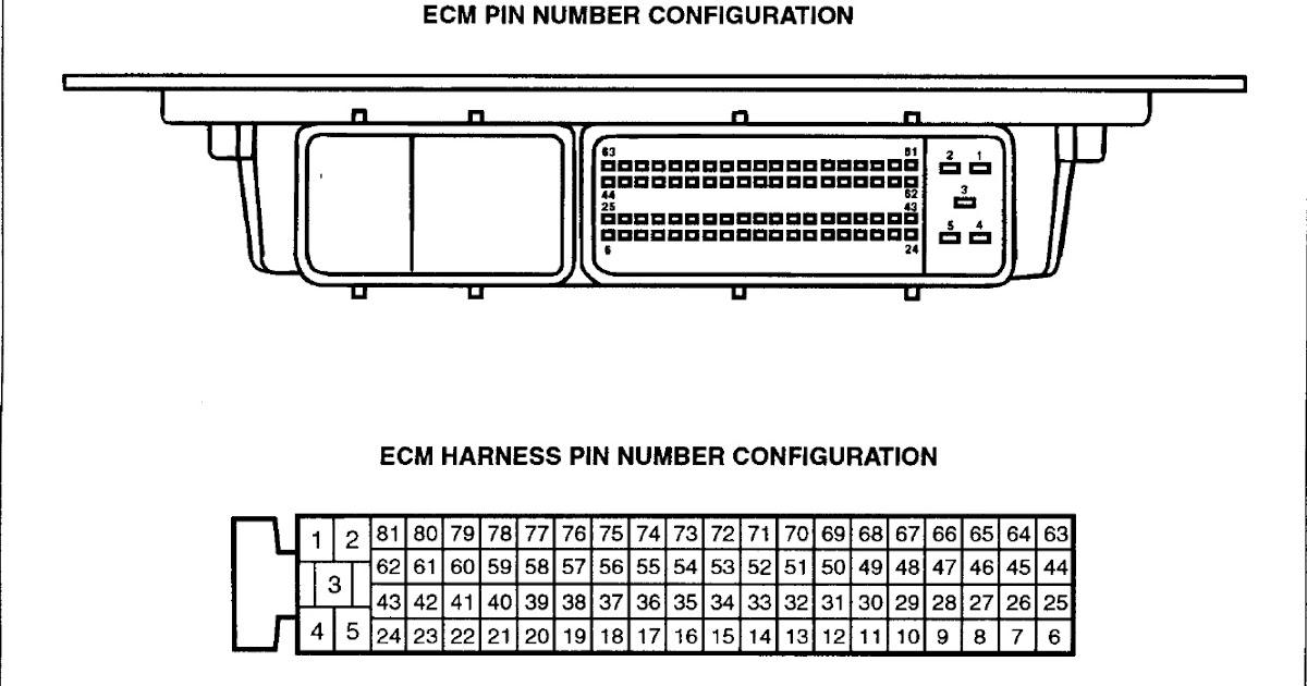 Autodata  Technical Data: Ecu Pinout : Hyundai Getz 13