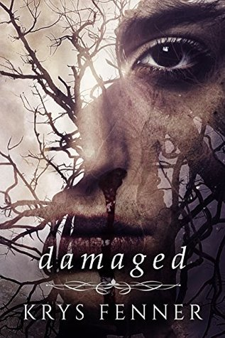 Damaged (Dark Road Book 2) by Krys Fenner