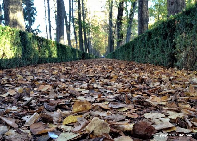 otoño en Madrid, lugares bonitos que ver