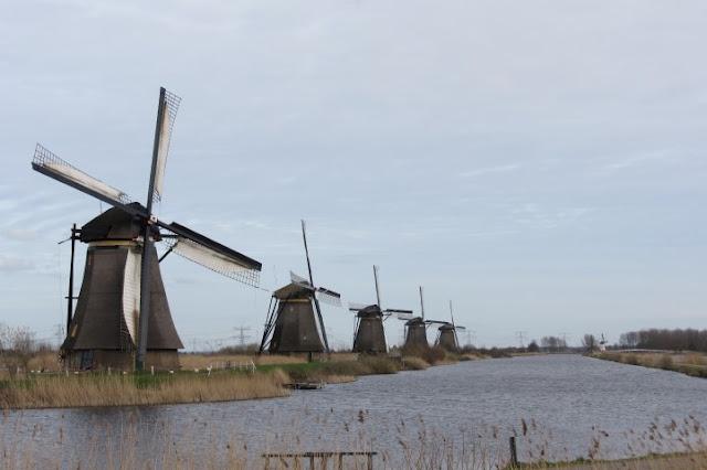 Kinderdijk - molens op een rij