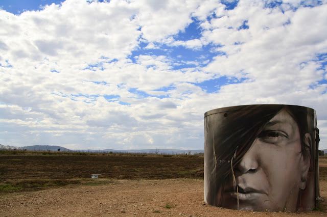 Winton Wetlands Landscape Art Guido Van Helten