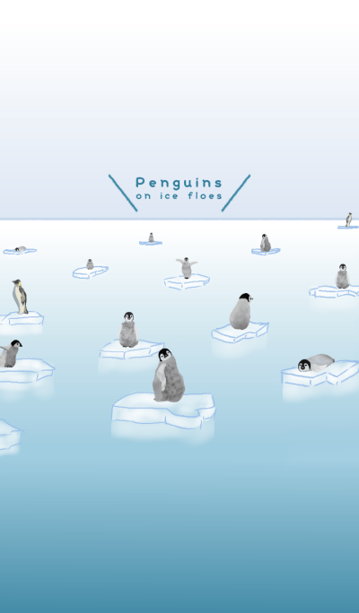 Penguins on ice floes