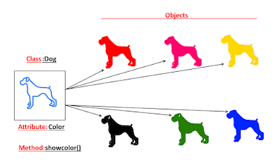 Class Dog with multiple objects