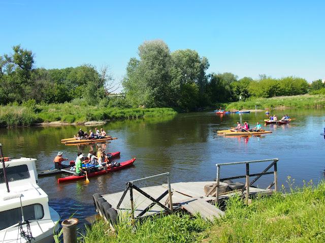rafting czyli spływ tratwami po Warcie w Obornikach. 6 załóg płynie po rzece w promieniach słońca.