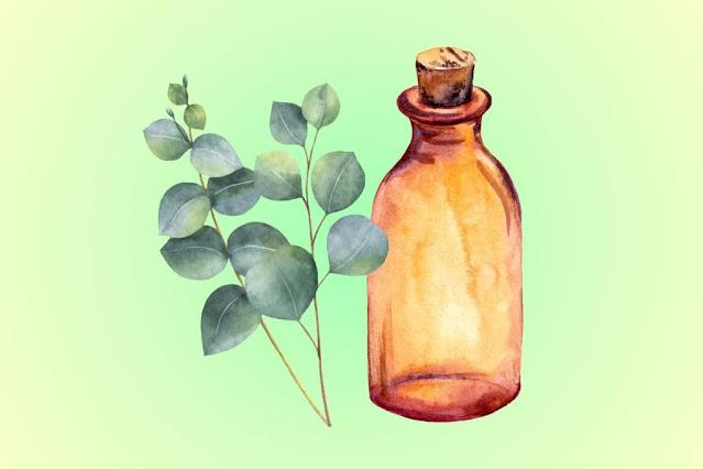 aceites mas usados en la cosmetica
