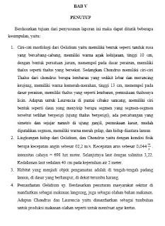 contoh bagian penutup pada laporan