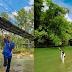 Sayum Sabah : Pemandian Kesegaran Alam tak Terhingga, Tiket Masuk & Lokasi