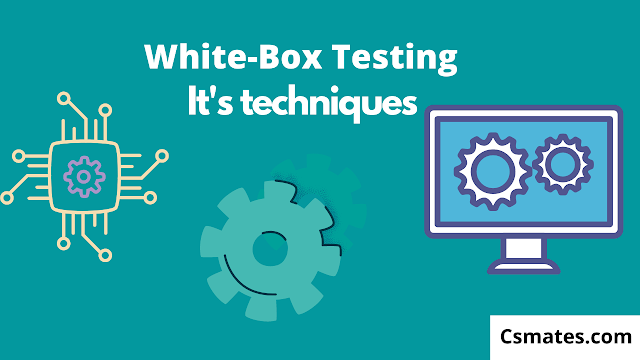 white box testing and its testing techniques