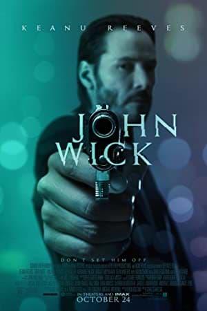John Wick 2014 BluRay 300MB Hindi Dual Audio 480p