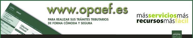 OPAEF - DIPUTACIÓN DE SEVILLA
