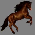 horse in spanish