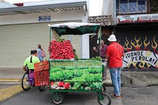 produce vendor in Santiago de Puriscal