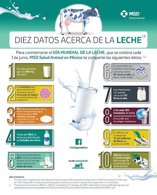 La leche, un alimento básico en la despensa de los mexicanos