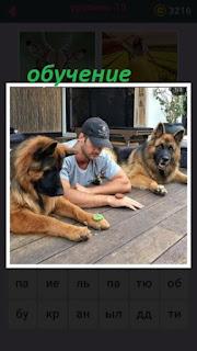 655 слов за столом мужчина обучает собак 19 уровень