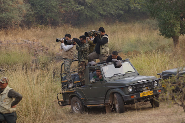 Ranthambore Safari Rates