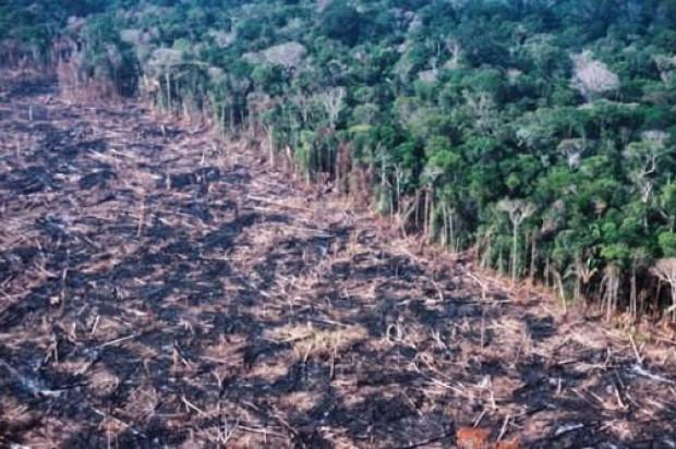 Εκδήλωση της ΚΝΕ Αργολίδας στο Ναύπλιο για την καταστροφή του Αμαζονίου