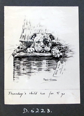 Persis Kirmse Dogs Thursday's child (dog in basket on way to New York)