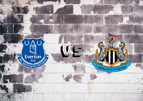 Everton vs Newcastle United  Resumen
