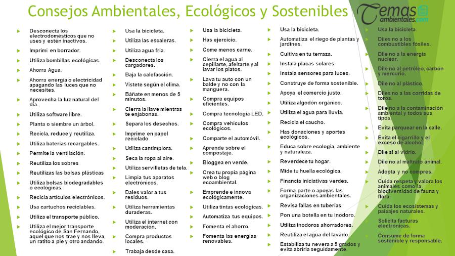 consejos ecologicos, ambientales y sostenibles para cuidar el medio ambiente